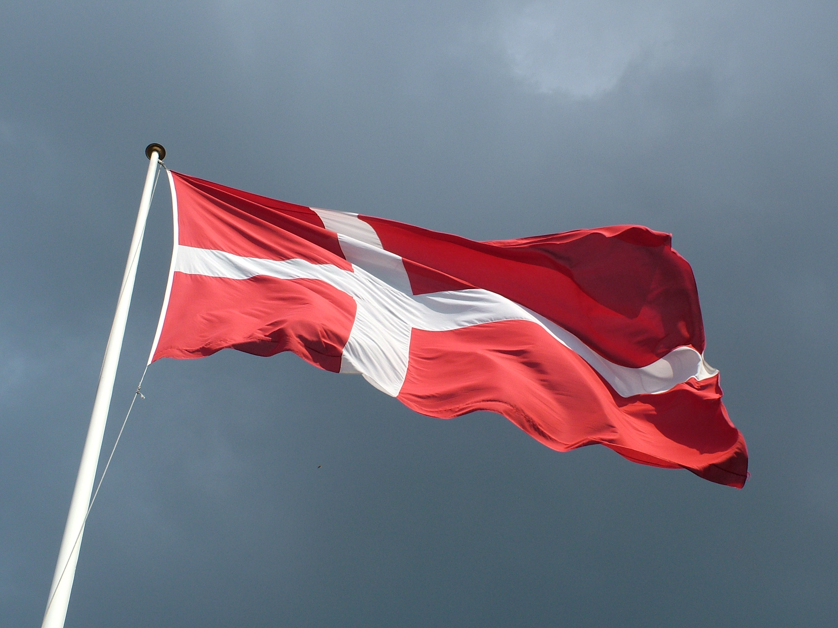 Теракт в Дании