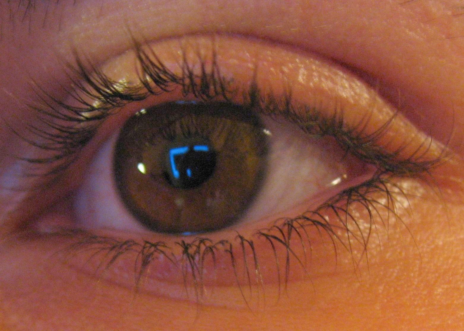 Erkältung Gelbes Sekret Auge