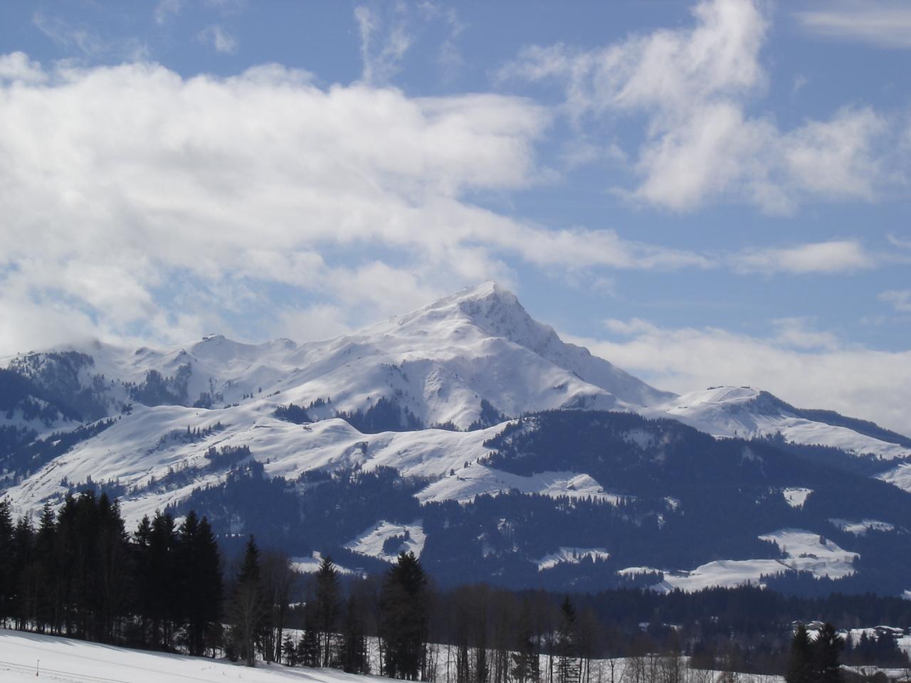 horn kostenlos bauern singletrail partnersuche kitzbüheler  Routensuche, Land Tirol.