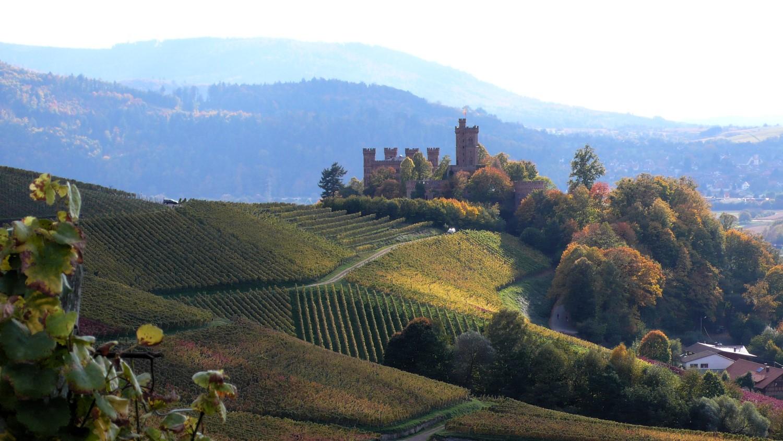 Weinanbau for Bodenbeschaffenheit deutschland