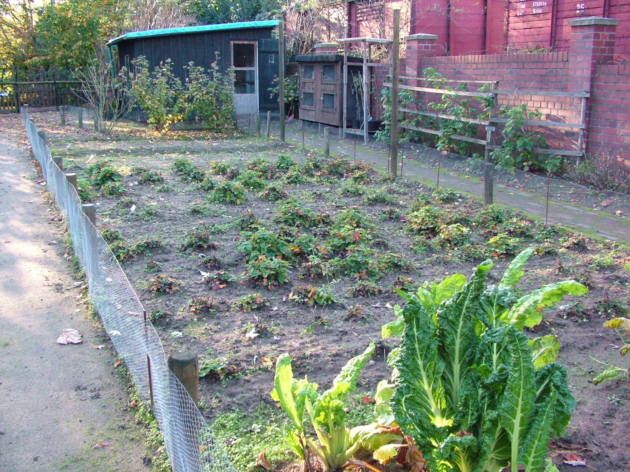 Garten for Gartengestaltung bauerngarten