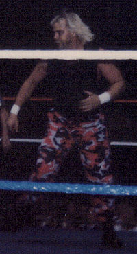 Barry Windham in 1996.jpg