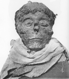 Ahmose-mummy-head.png