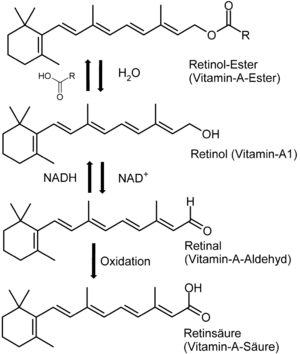 Vitamin-A-Synthese