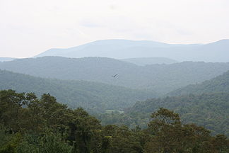 Blick in die Blauen Berge am Blue Ridge Mountain Parkway