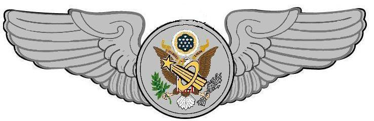 astronaut wings insignia - photo #31
