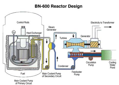 установки БН-600.