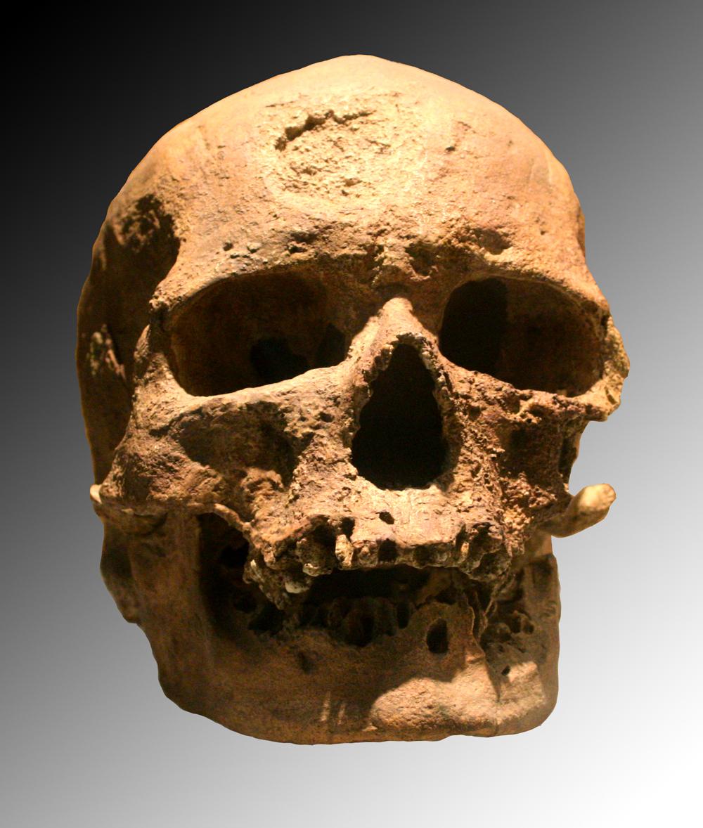 first homo sapiens found - photo #1