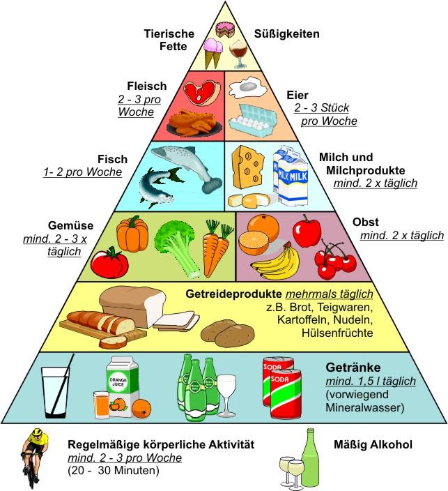 perfekte ernährung zum abnehmen