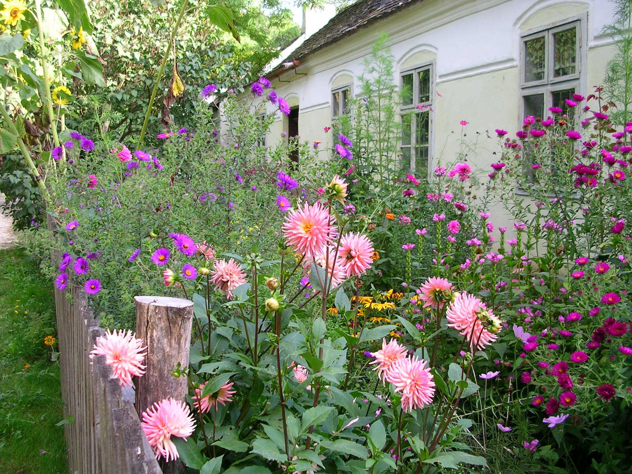Bauerngarten for Gartengestaltung bauerngarten