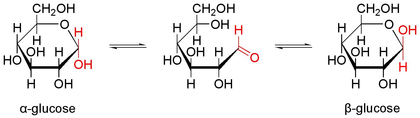 D Ribose B Pyranose Ring