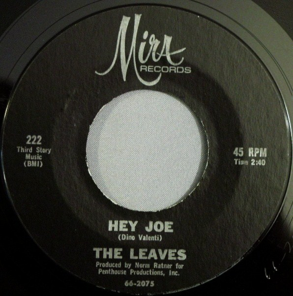 Leaves - Hey Joe.