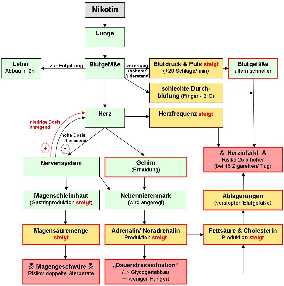 download Elektrotechnik in Württemberg