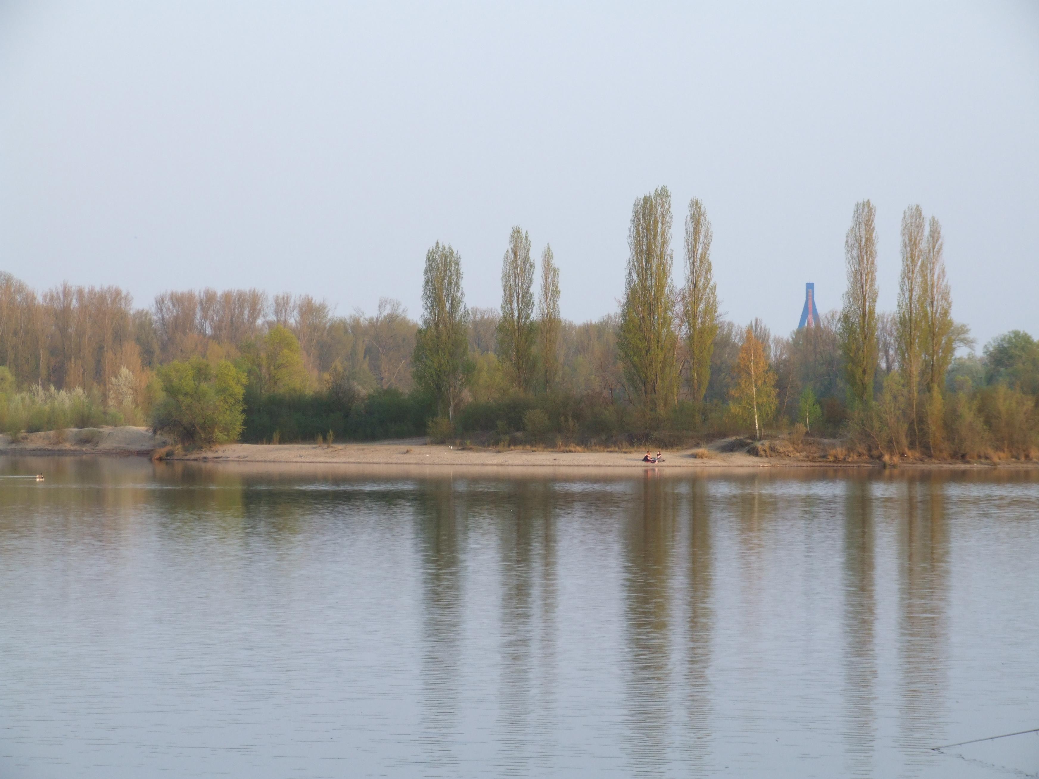 Binsfelder See