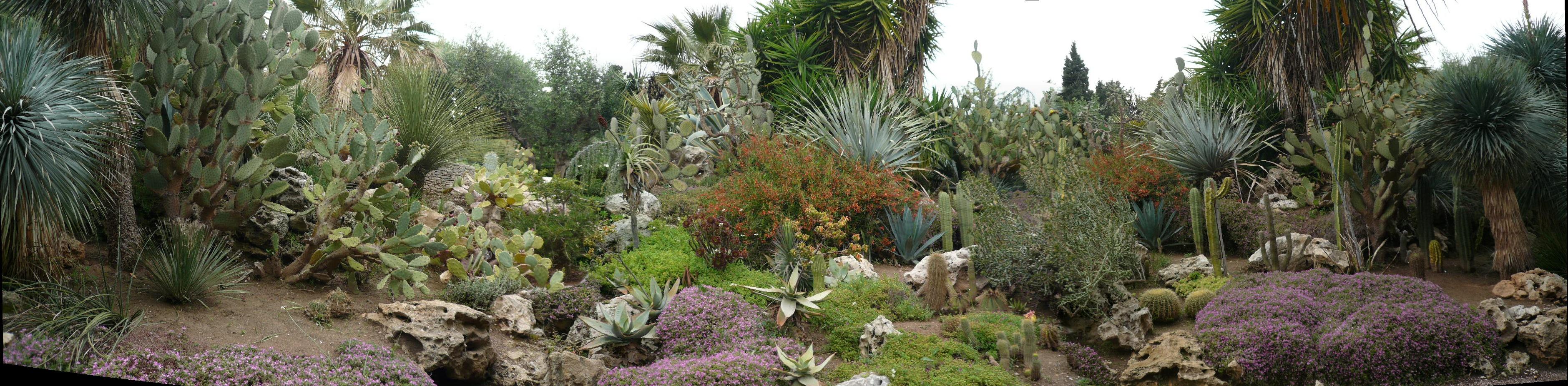 Hyeres for Jardin olbius riquier