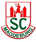 Handball Länderspiel In Magdeburg