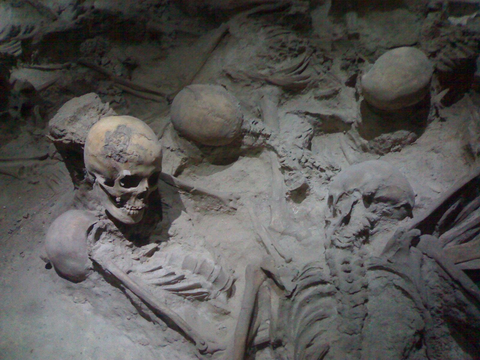 Ercolano Italy  city photos : Skelettfunde aus Herculaneum