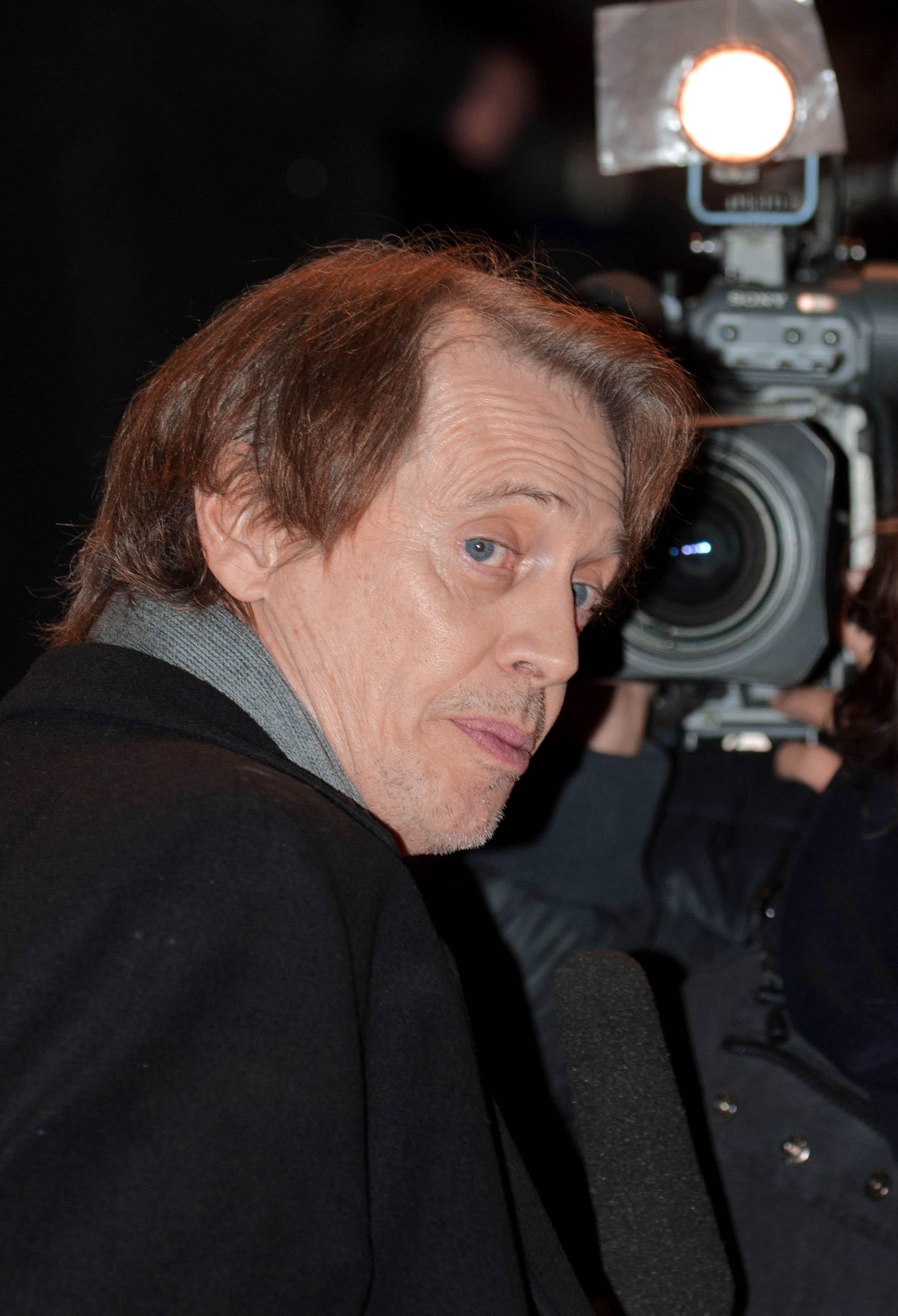 Steve Buscemi Filme