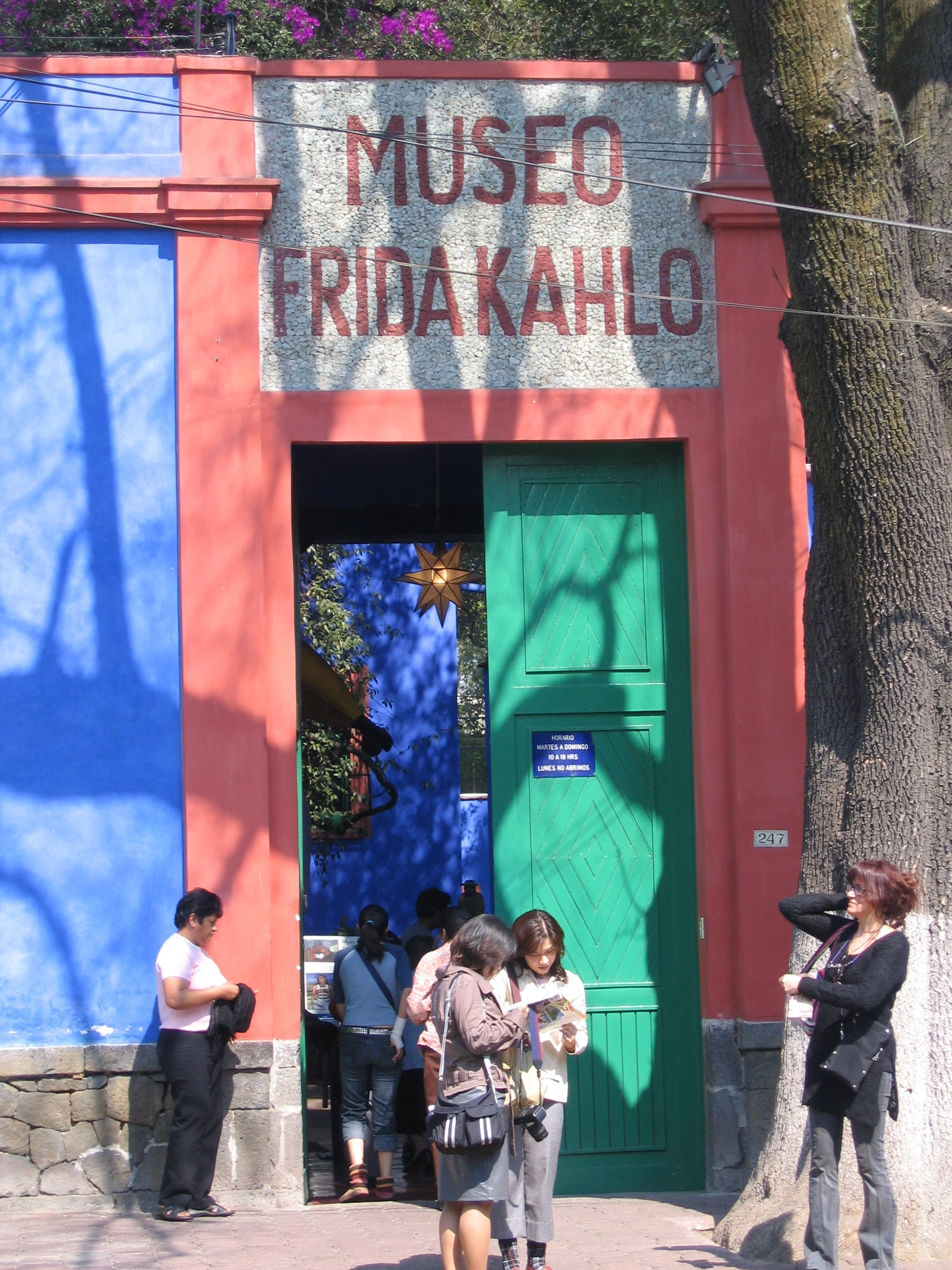 frida kahlo. Black Bedroom Furniture Sets. Home Design Ideas