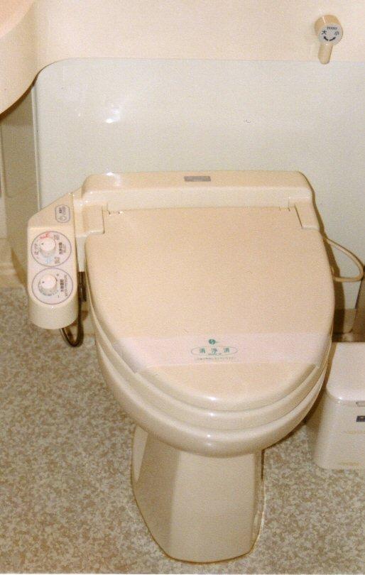toilette. Black Bedroom Furniture Sets. Home Design Ideas