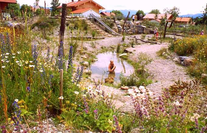 Natur erlebnis raum for Raum pflanzen