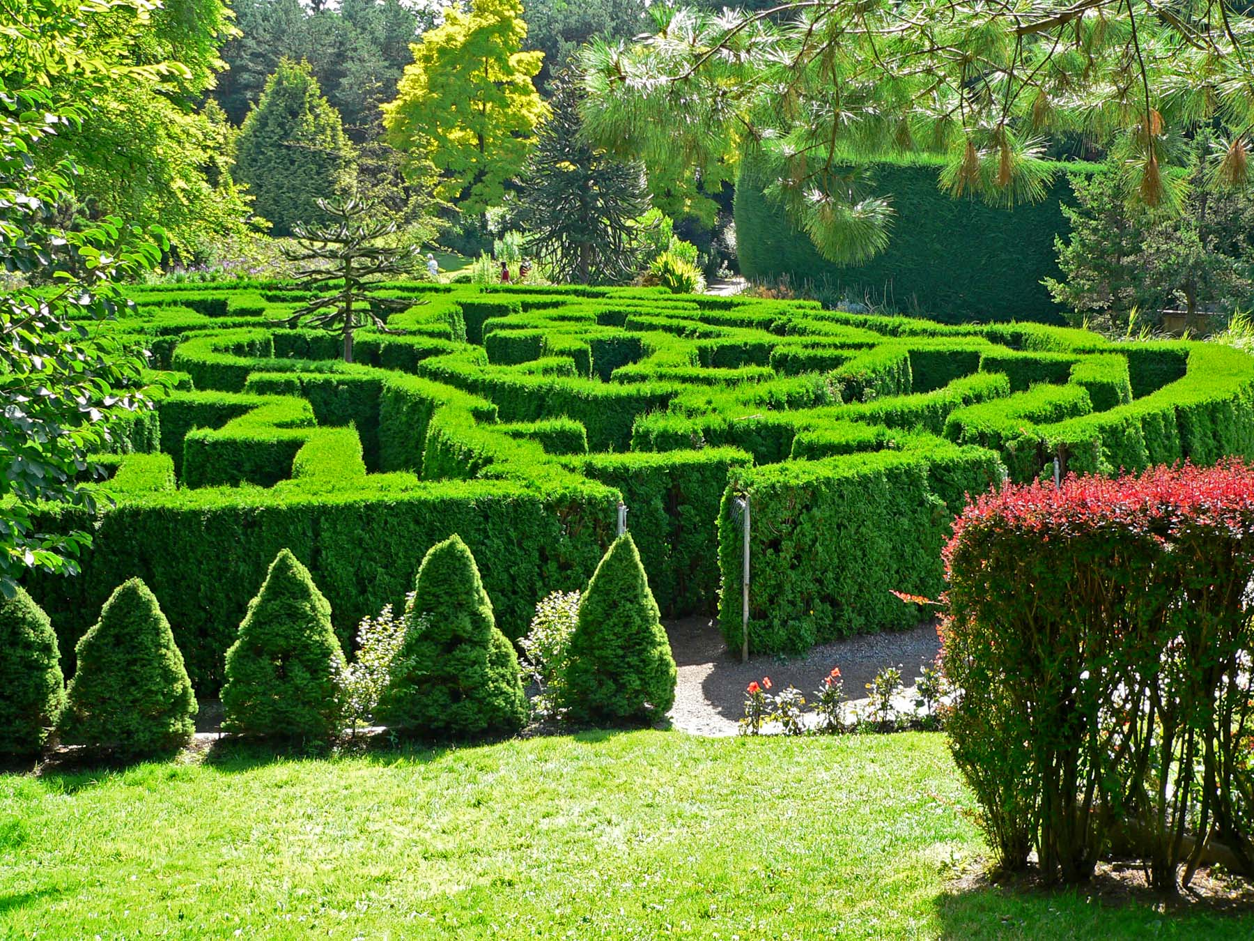 Labyrinth On Pinterest Labyrinths Hedges And Labyrinth