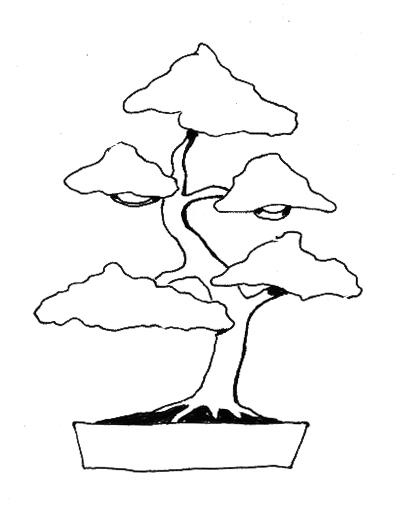 Line Drawing Jungle : Strichzeichnung