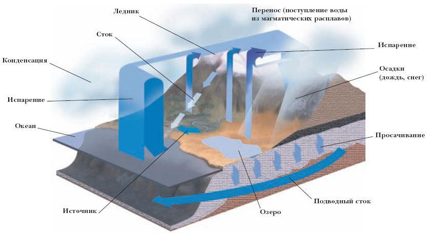 Круговорот воды в природе Выделяются следующие осн. звенья круговорота воды: атмосферное, океаническое, материковое...