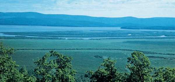 заливные луга), характерны для долин рек, заливаемых во время половодий.  Встречаются в умеренном поясе...